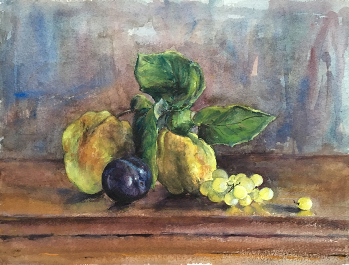 Stilllife with Quinces, Plum and Grapes. Watercolor, 12 x 16 in.